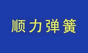 【温州顺力弹簧有限公司 】温州, 配件,铆钉,弹簧