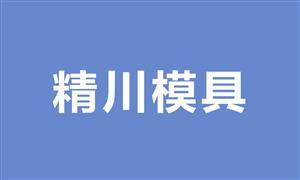 【温州市精川模具制造厂】浙江,温州,模具,锁·模具,脚轮模具,其它模具