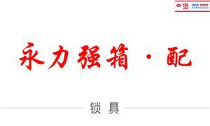 【东莞永力强锁业有限公司 】广东,东莞, 配件,锁具,TSA